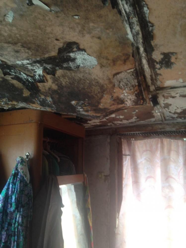 Фото новости - Три семьи из Феодосии получили по протоколу за антисанитарию в доме