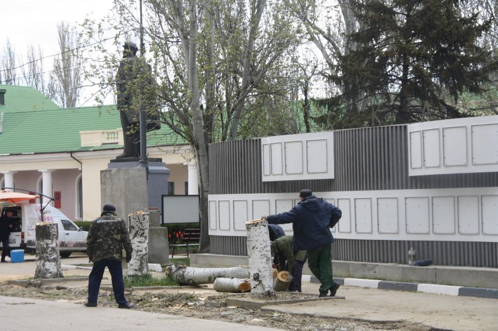 Фото новости - В Феодосии у Доски Почета спилили тополя
