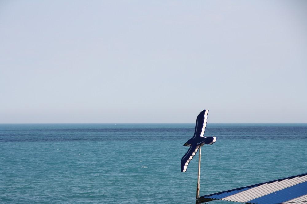 Фото новости - На одном из пляжей под Феодосией