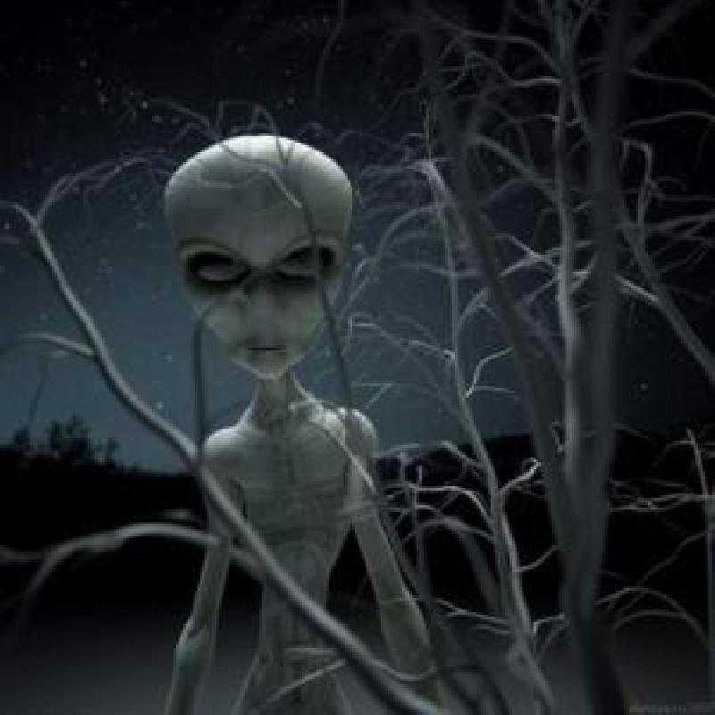 Уфологи утверждают, что инопланетяне посещают Землю не только для того