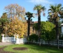 В Крыму создадут предприятие «Никитский ботанический сад – Крымский научный центр»