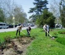 В Крыму проведут субботник ко Дню эколога