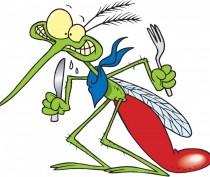 Роспотребнадзор возложил ответственность за расплодившихся в Крыму комаров на муниципалитеты
