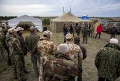 Феодосия. Новость - Феодосийцы получили дипломы на лично-командных состязаниях легавых собак