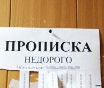 Крымчанка может получить три года колонии за фиктивную прописку граждан Узбекистана