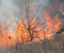 Комиссия по предупреждению и ликвидации ЧС определила 1 апреля началом летнего пожароопасного периода в Крыму