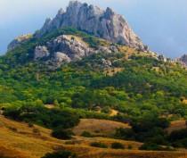 Размер ущерба, нанесенного природе Крыма с начала года, превышает 3 млрд рублей