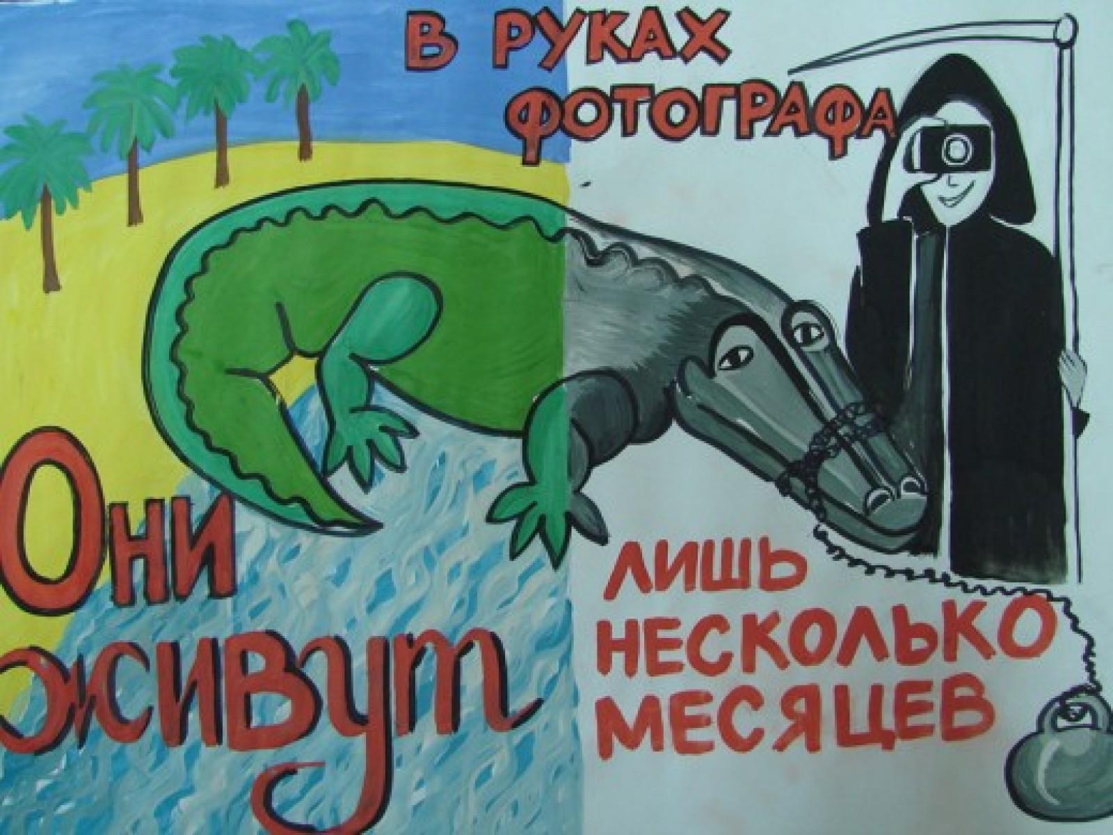 Конкурс социального плаката о животных