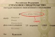 Феодосия. Новость - Феодосийцев, сдавших летом анкеты застрахованных лиц, приглашают для получения свидетельства СНИЛС