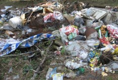 Феодосия. Новость - Отработчики расчищают от мусора полигон вдоль дороги на Орджоникидзе