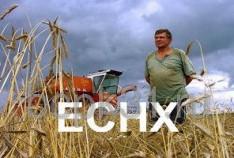 Феодосия. Новость - Расширен перечень хозяйствующих субъектов, имеющих право применять Единый сельскохозяйственный налог (ЕСХН)