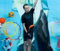 Новости Феодосии: Тренер дельфинов: «У них своя аура, необычная»