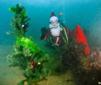 Новости Феодосии: На дне Феодосийского залива дайверы установили новогоднюю елку