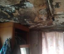 Три семьи из Феодосии получили по протоколу за антисанитарию в доме
