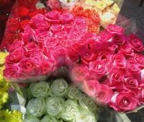 В Феодосии проходит цветочная ярмарка (ФОТО)
