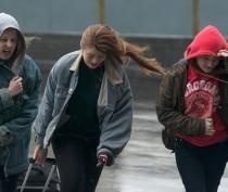 Новости Феодосии: В Феодосии дождливо, сильный ветер