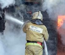 Новости Феодосии: Феодосийские огнеборцы спасли на пожаре женщину с шокированным котом