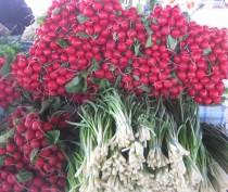 Новости Феодосии: Цены на огурцы и помидоры в Феодосии еще «кусаются»