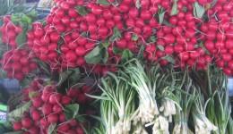 Цены на огурцы и помидоры в Феодосии еще «кусаются»