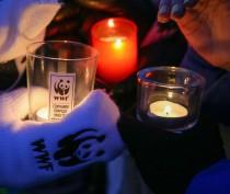 Новости Феодосии: Феодосийцам предлагают час посидеть в темноте