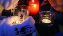 Феодосийцам предлагают час посидеть в темноте