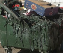 Новости Феодосии: В Феодосии горят «мусорки»