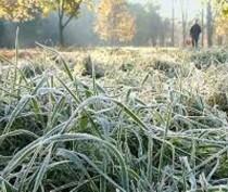 Новости Феодосии: Крымский главк МЧС предупредил о заморозках на грунте