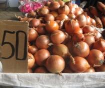Новости Феодосии: Репчатый лук в Феодосии скоро станет «золотым»