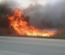 Новости Феодосии: МЧС предупредило о высокой пожарной опасности