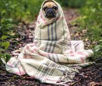 Новости Феодосии: Холодно, возможен дождь