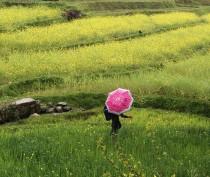 Новости Феодосии: Погода в Феодосии на субботу