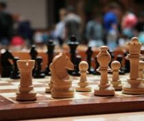 Дети сыграют в шахматы на турнире по случаю дня рождения Феодосии