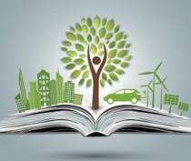 Штрафы за нарушение экологических норм растут
