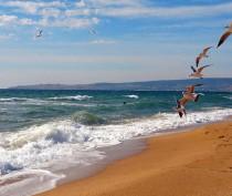 Новости Феодосии: Солнечный день после грозы