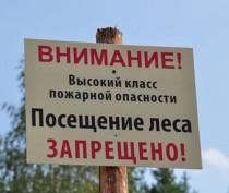 В Крыму снова ввели ограничение на посещение леса