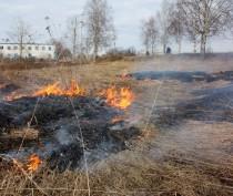 Керчь и Ленинский район вошли в число наиболее пожароопасных регионов Крыма
