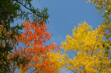 Первый день октября в Феодосии!