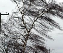 Сильный ветер рвет электропровода в Феодосии