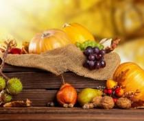Традиционный праздник урожая и молодого вина пройдет под Феодосией