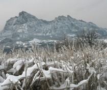 Как в Феодосии отпраздновать Старый Новый год?