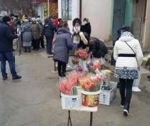 В Феодосии пресекли незаконную деятельность по реализации цветов
